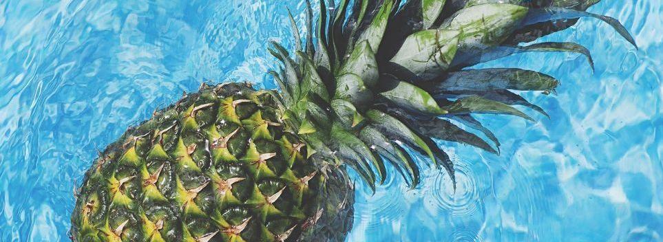 ananas-wordpress-2-963x642